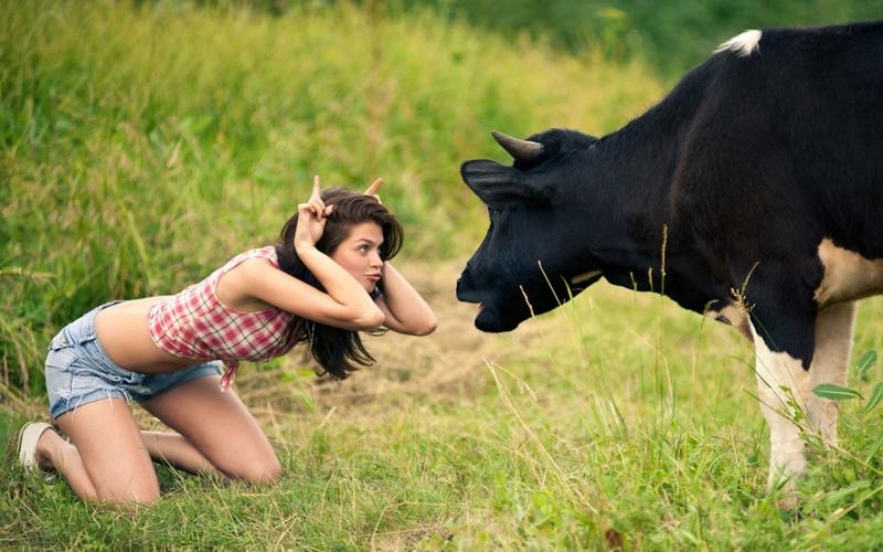 известной девушк на половину корова Представители