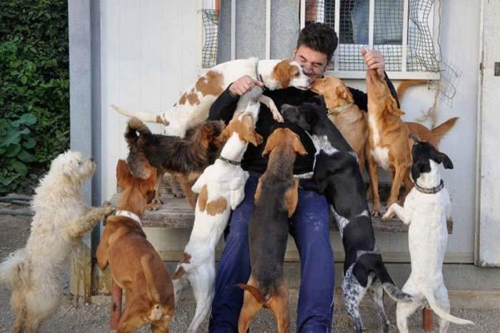 15 смешных историй из жизни собачников